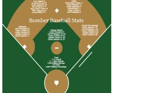 Baseball Stats 2014