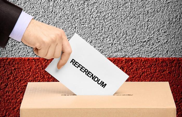 Znalezione obrazy dla zapytania referendum