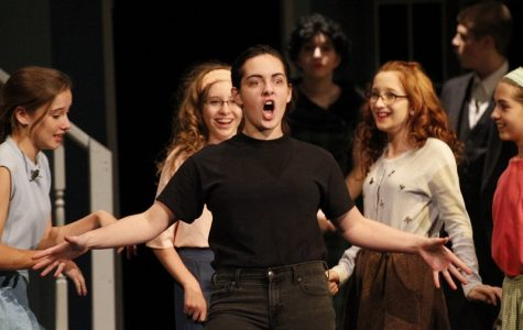 Bye bye Birdie – hello applause