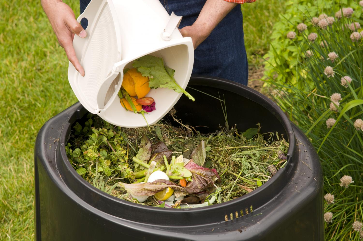 Composting food scraps may be one answer to our landfill problems
