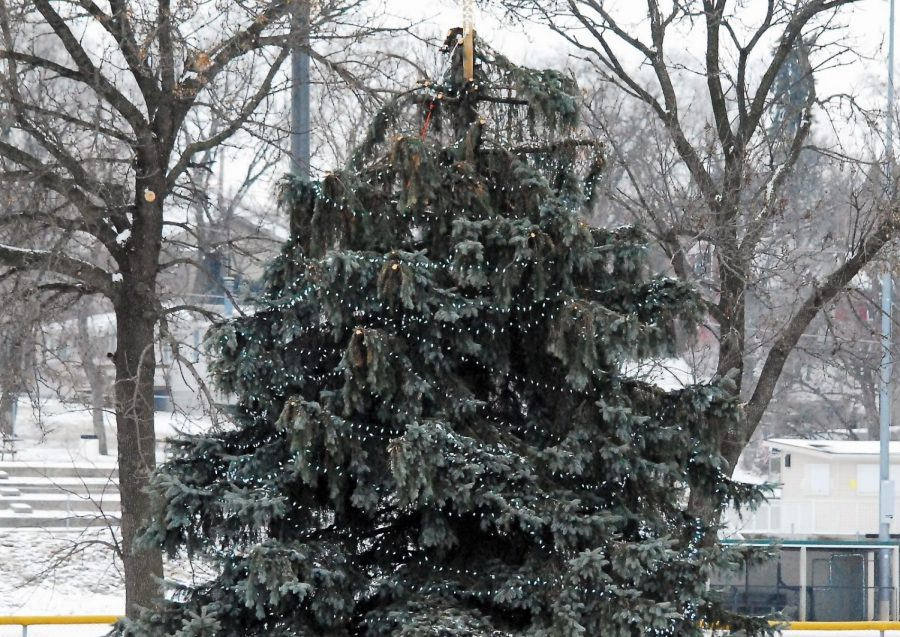 Every year during the Deck the Falls celebration, Cannon Falls features a decorated tree along the banks of the river