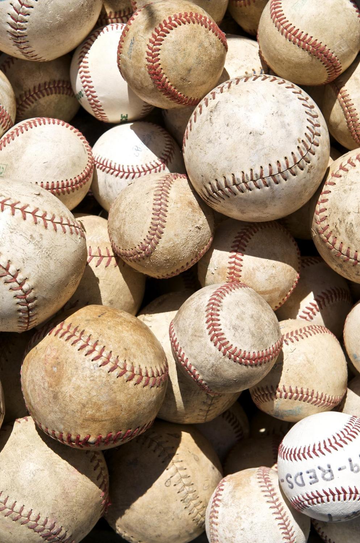 Baseball and softball coaches preview the season