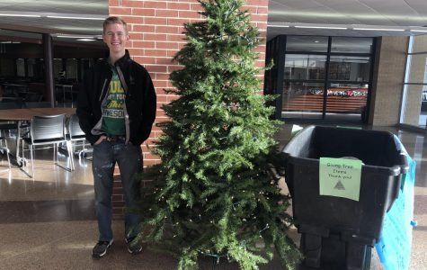 Rockin' around the Giving Tree