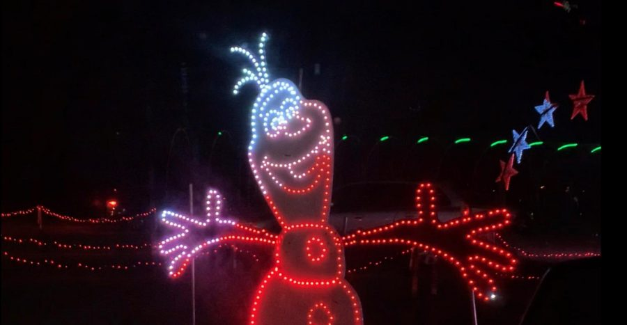The wintery characters and festive songs made light shows a great experience for all ages.