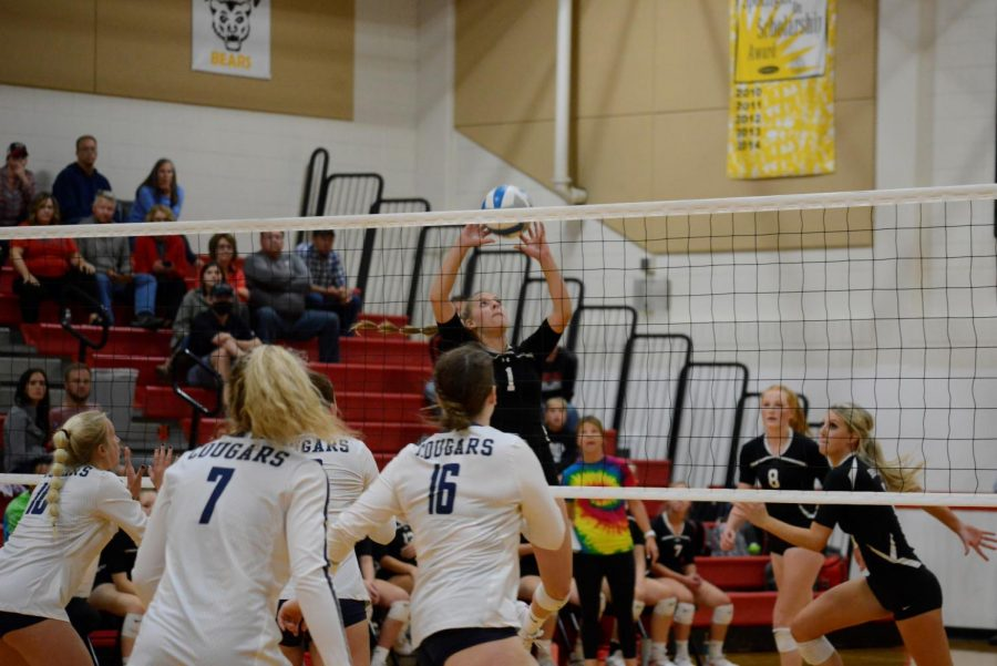 Jaci Winchell sets the ball for her teammates against Zumbrota-Mazeppa.